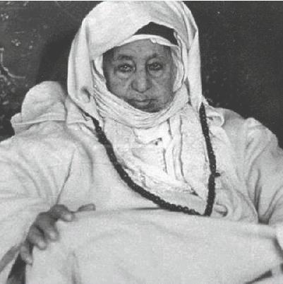 Shaykh Muhammad bil Habib look