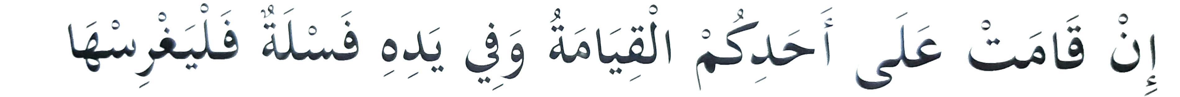 hadith tree